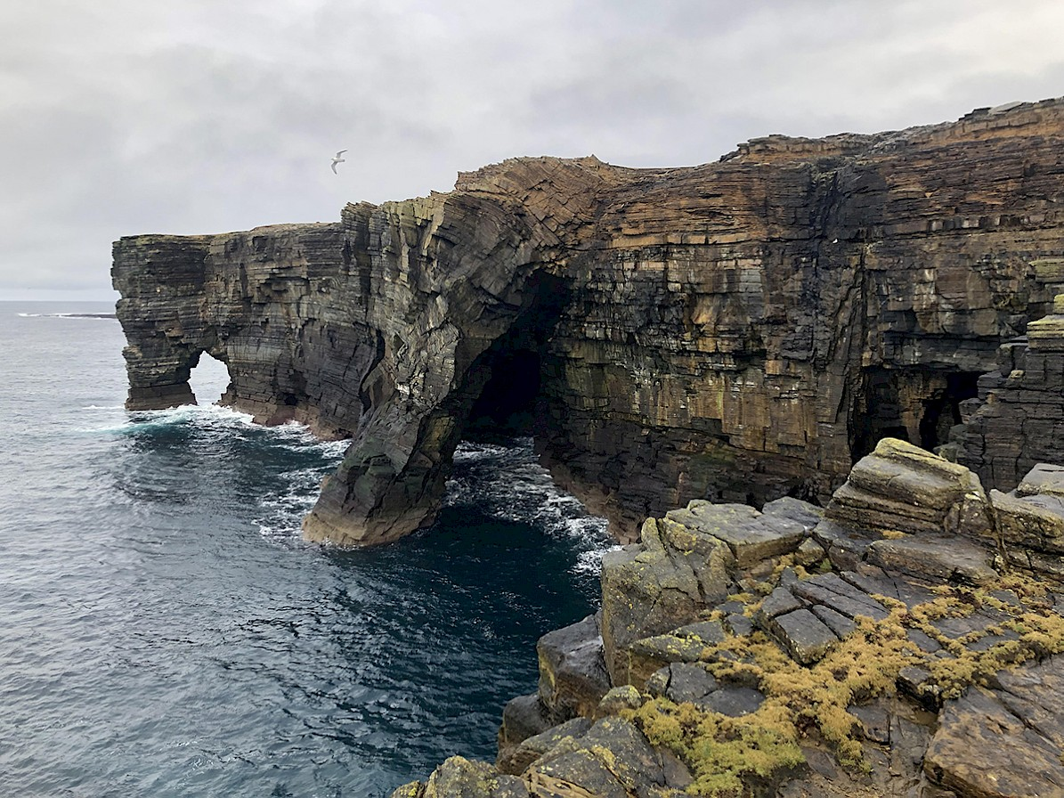 Rousay coastline, Orkney - image by Frances Scott