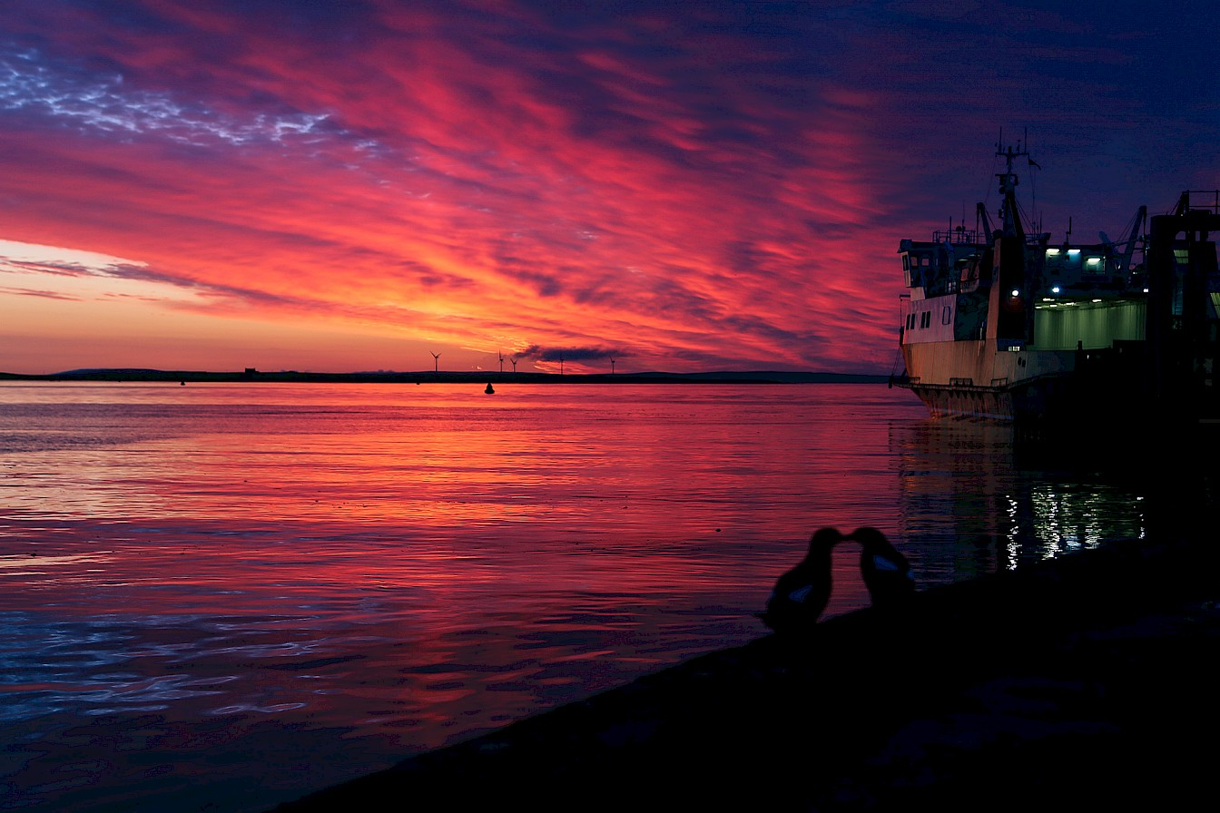 Sunset kiss on Stronsay pier - image by Iain Johnston