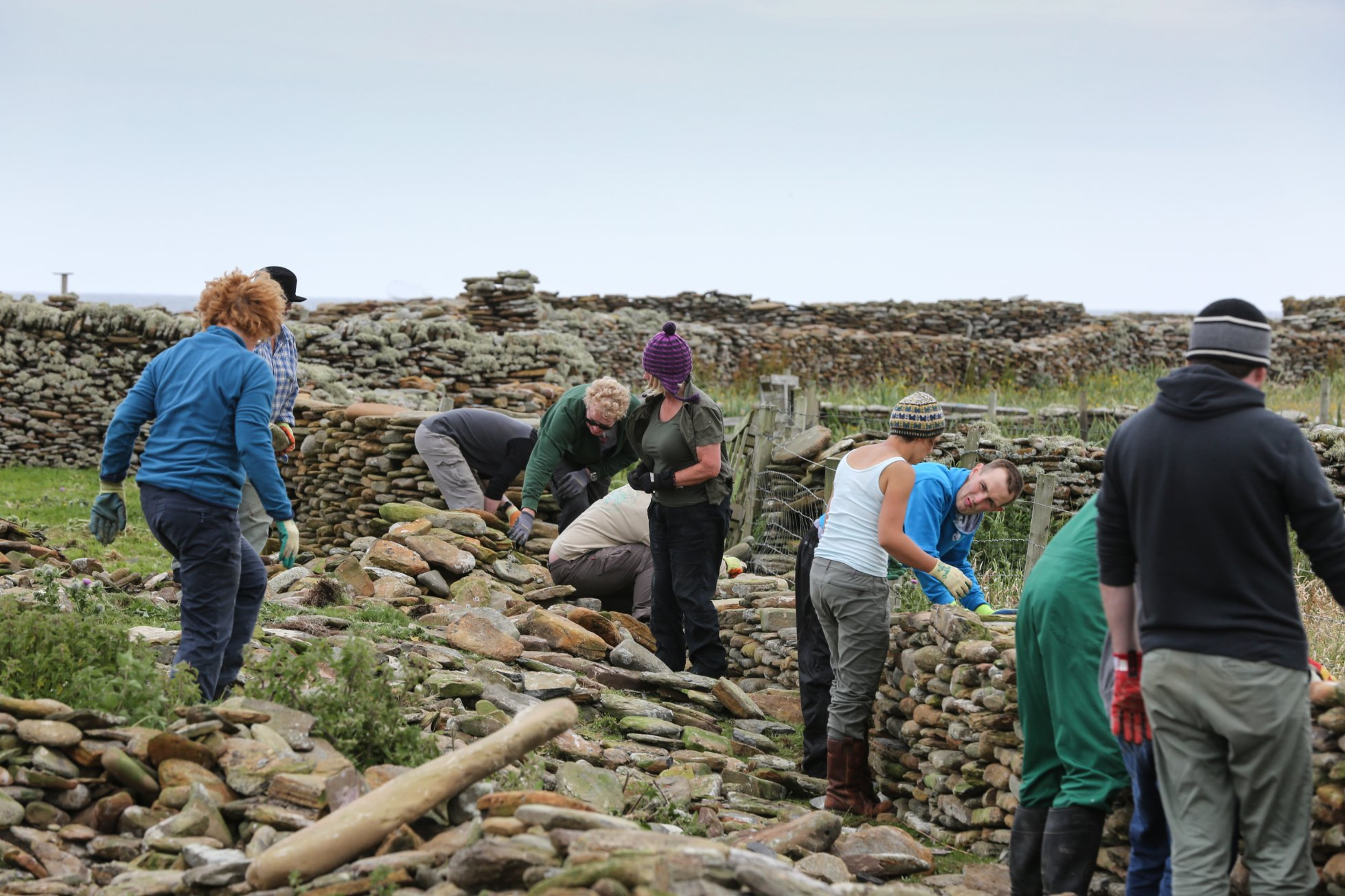 Helping rebuild the sheep dyke at the 2017 festival