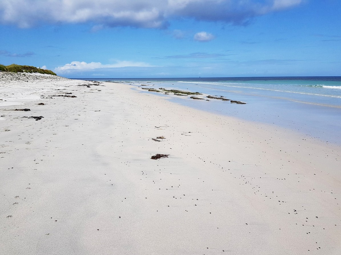 Deserted white sand beaches in Sanday - image by Susanne Arbuckle