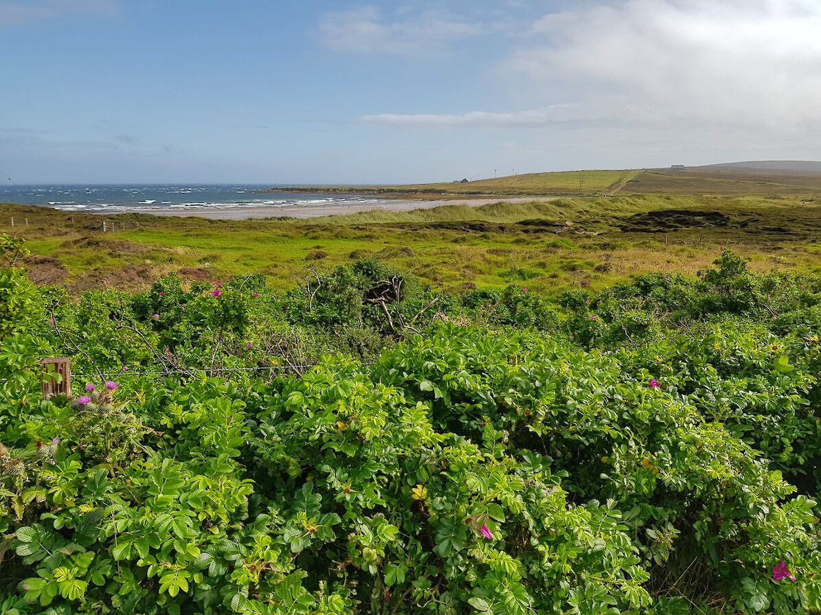View towards a beach in Eday - image by Susanne Arbuckle