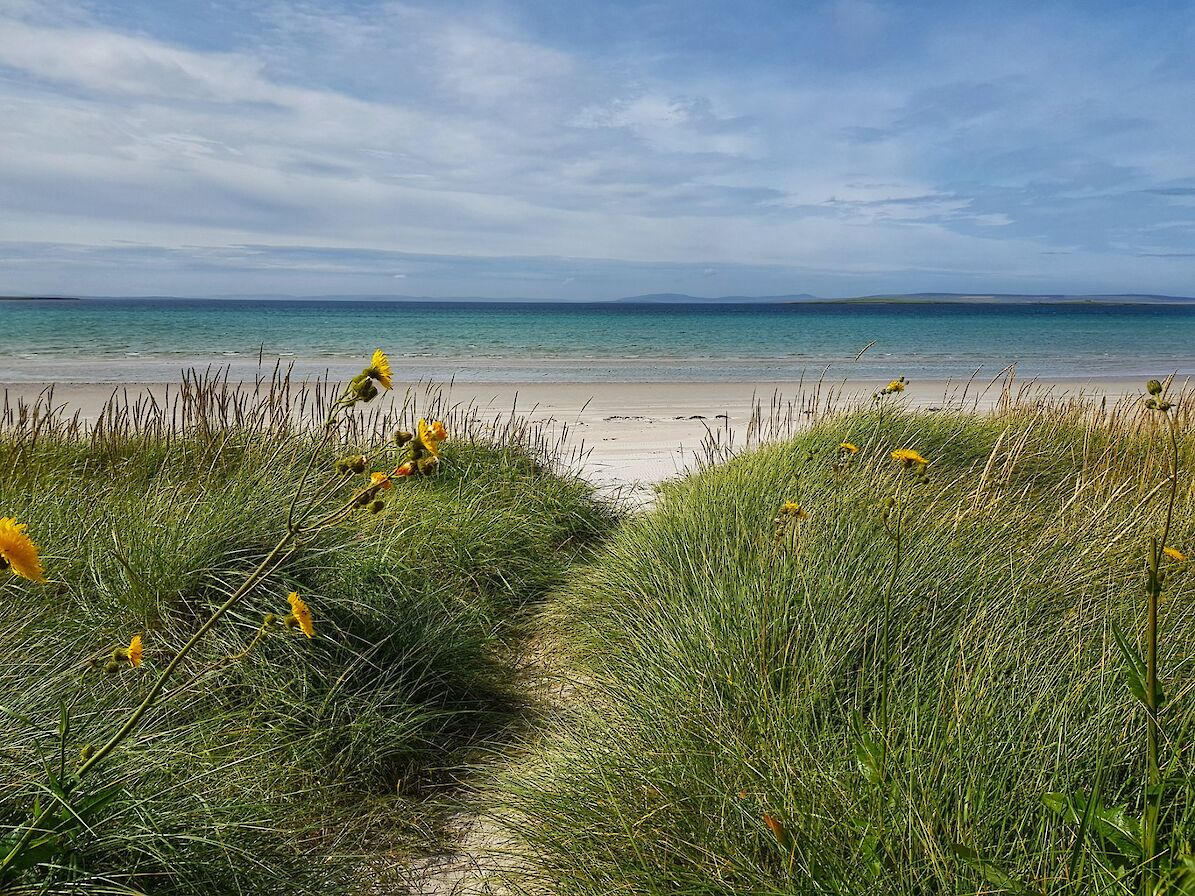 One of Stronsay's stunning beaches - image by Susanne Arbuckle