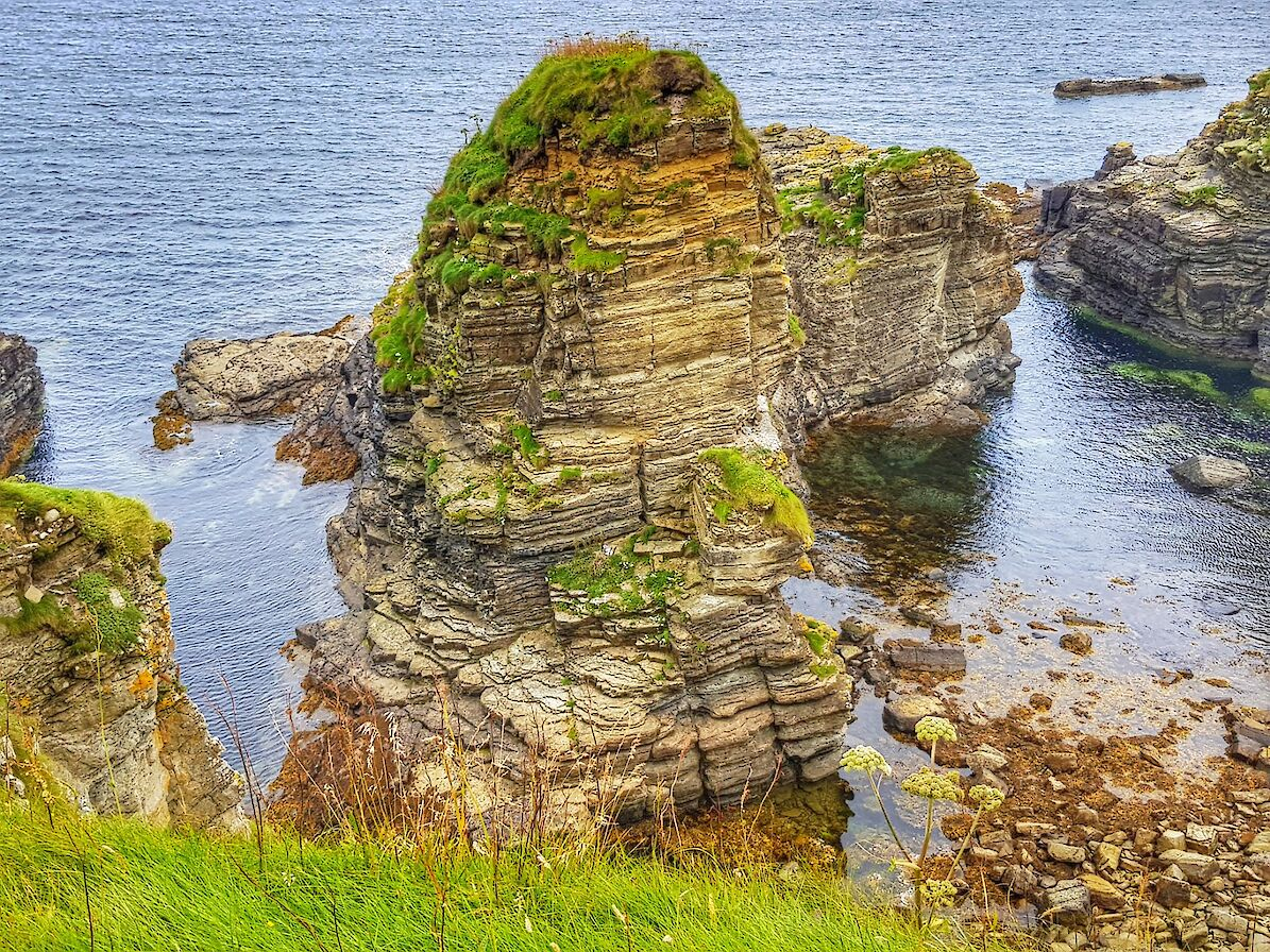 Sea stack off the Stronsay coast - image by Susanne Arbuckle