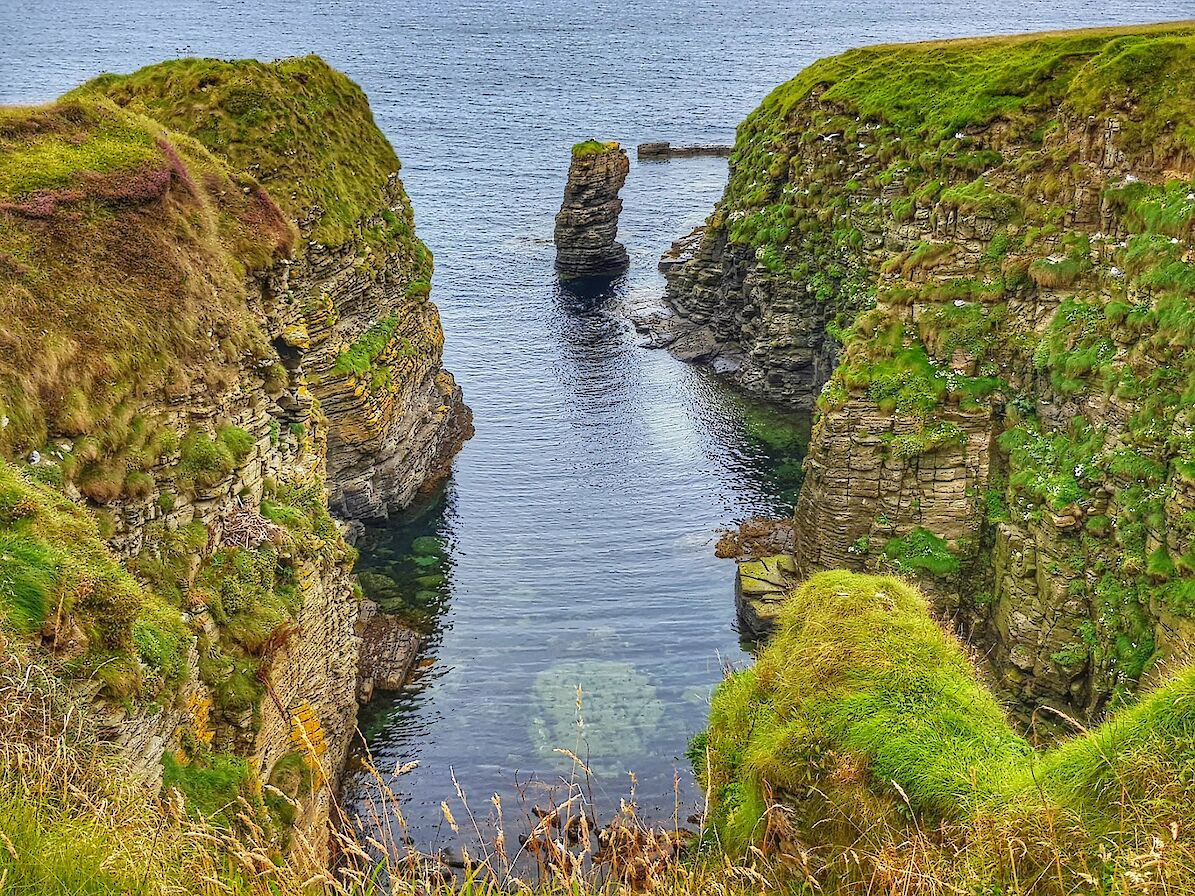 Part of the Stronsay coastline - image by Susanne Arbuckle