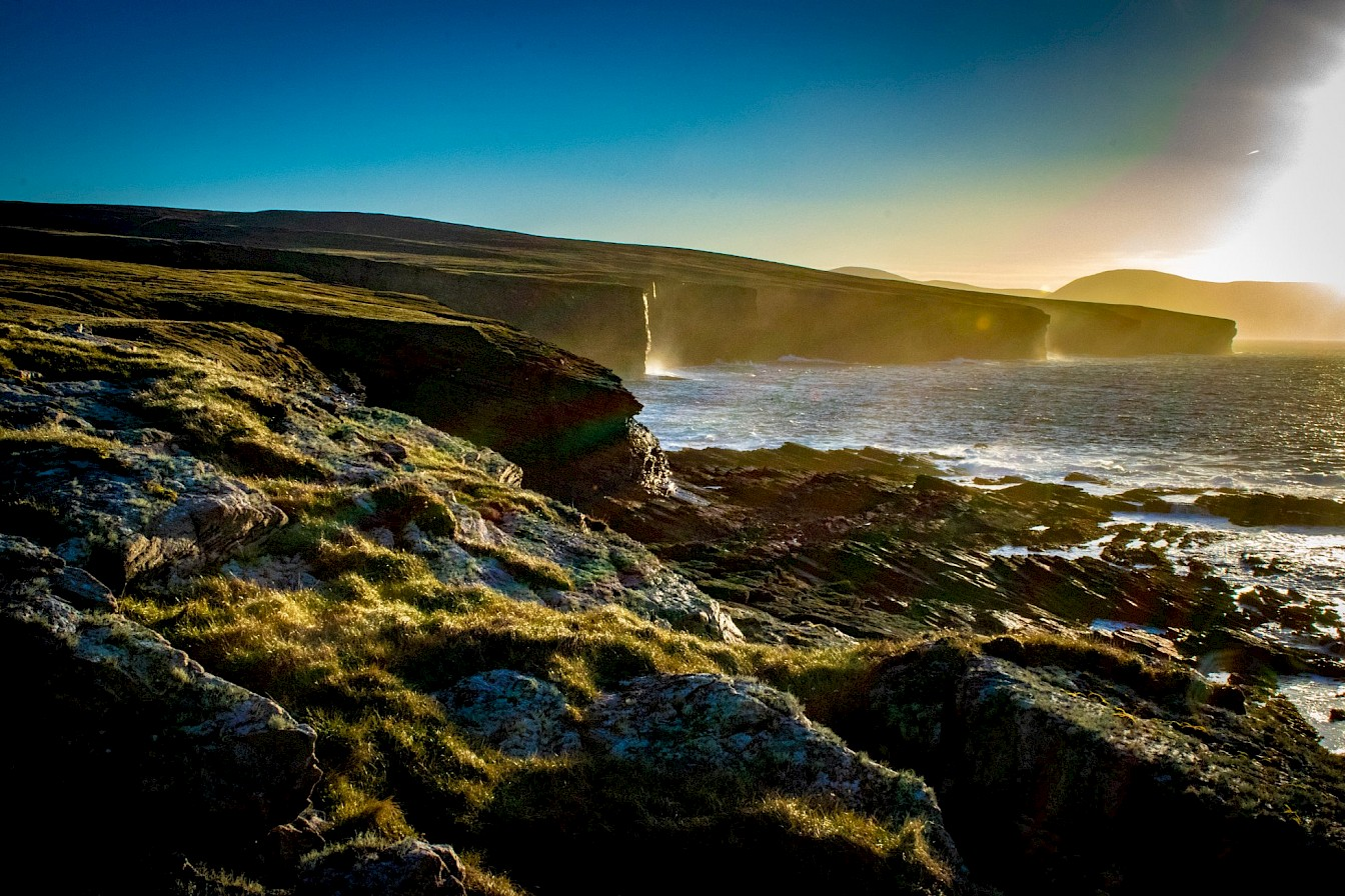 Orkney's west coast - image by Robert Towns