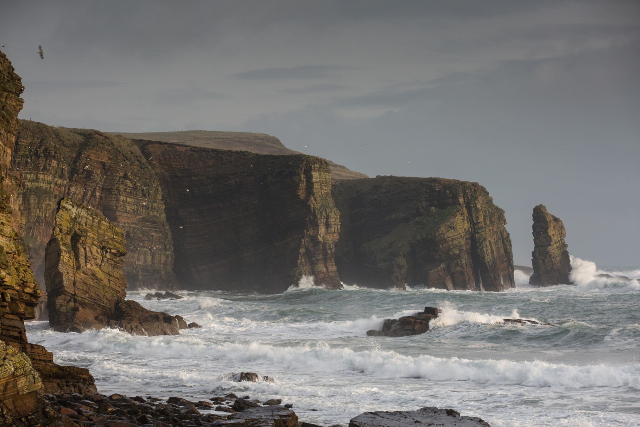The coastline at Hesta Head, Orkney