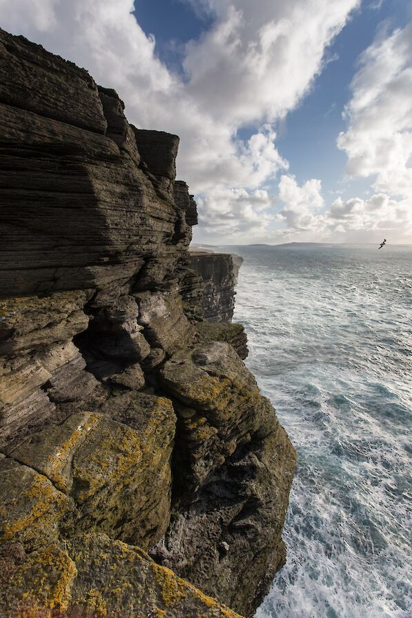 The cliffs at Noup Head Lighthouse, Westray