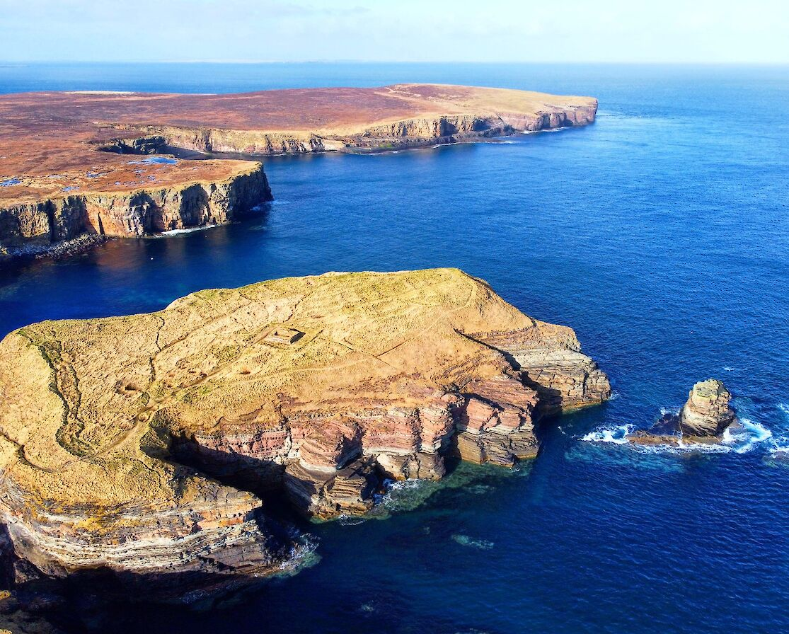 Brough of Deerness, Orkney - image by Scott Desmond