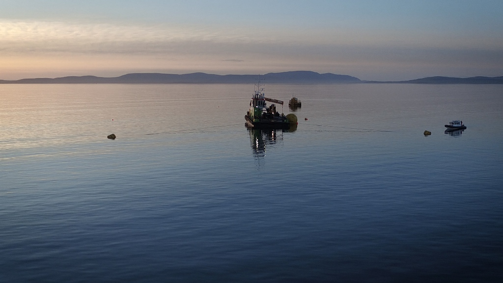 The Green Marine team at work in Scapa Flow, Orkney