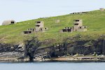 The Hoxa Head batteries in South Ronaldsay