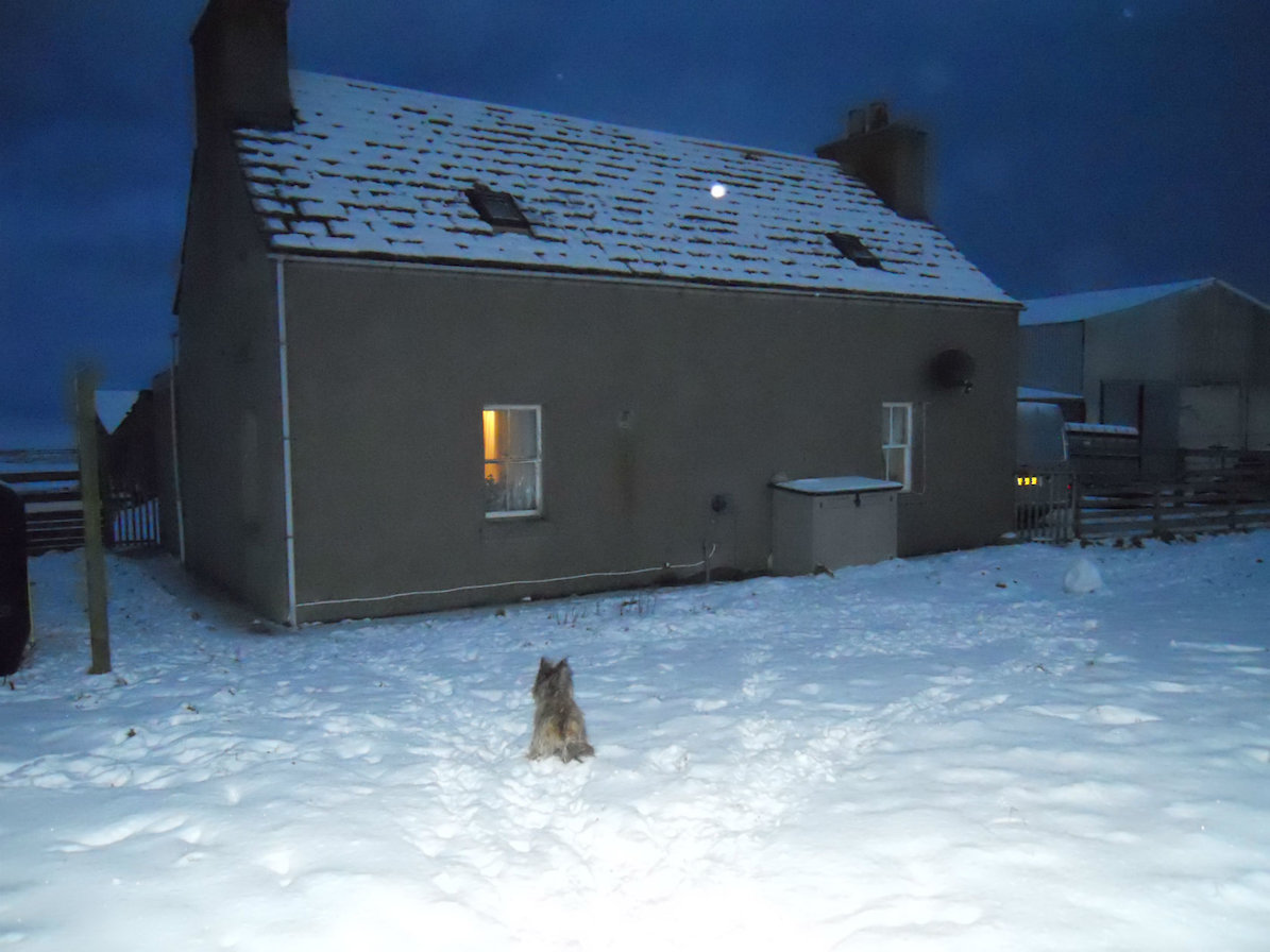 My House in Orkney