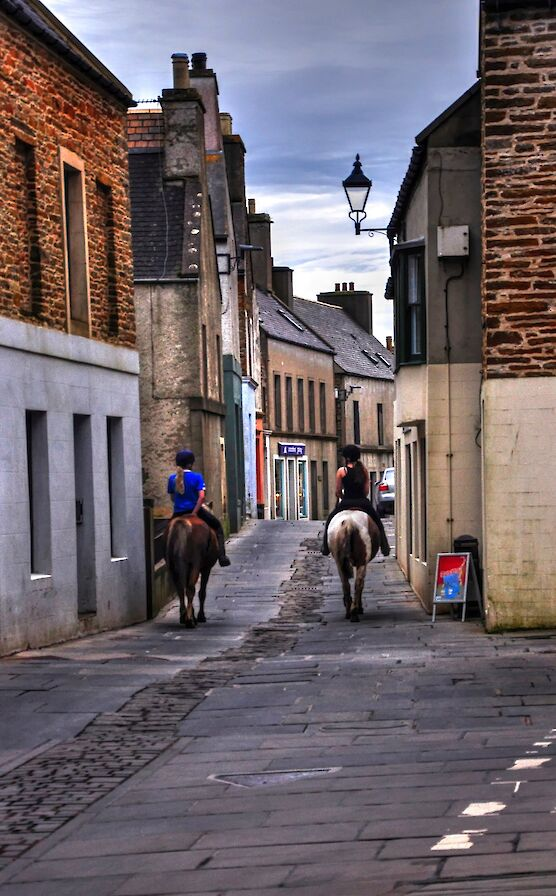 Horses on the street in Stromness - image by Glenn McNaughton