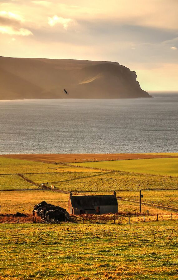 The view across Hoy Sound, Orkney - image by Glenn McNaughton