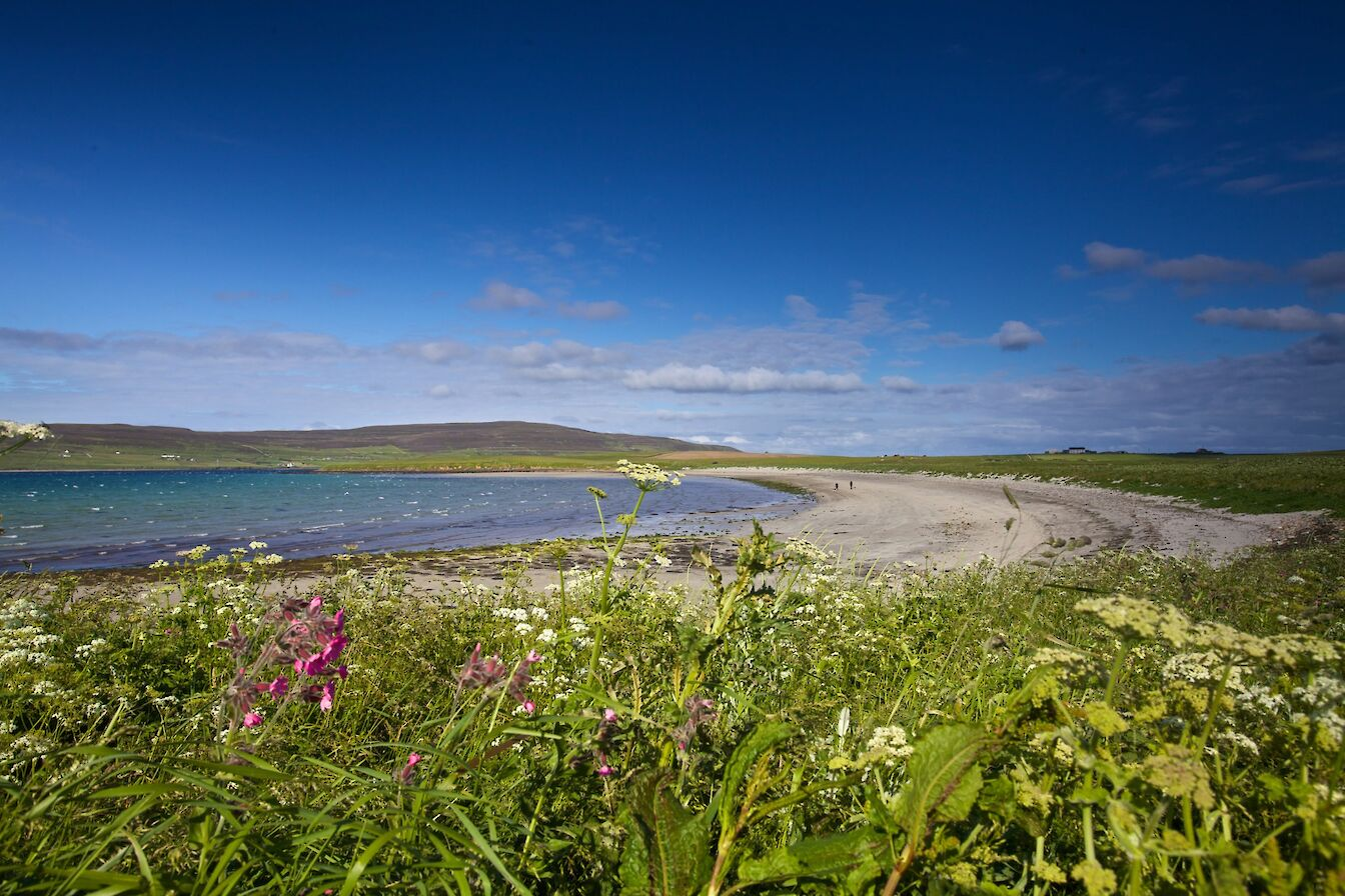 The beach at Sands of Evie, Orkney - image by Colin Keldie